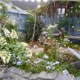 B・BLUE GRAYの庭